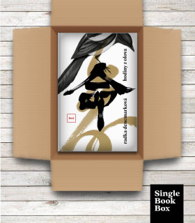 Single Book Box: Hodiny z olova (Radka Denemarková)